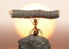 Superación personal: cuestión de actitud