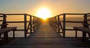Psicología Positiva: un futuro desde el optimismo