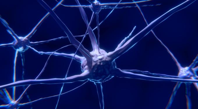 Neurociencia: neuronas espejo y artes escénicas