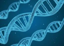 Epigenética: cómo nuestro estilo de vida afecta la expresión genética